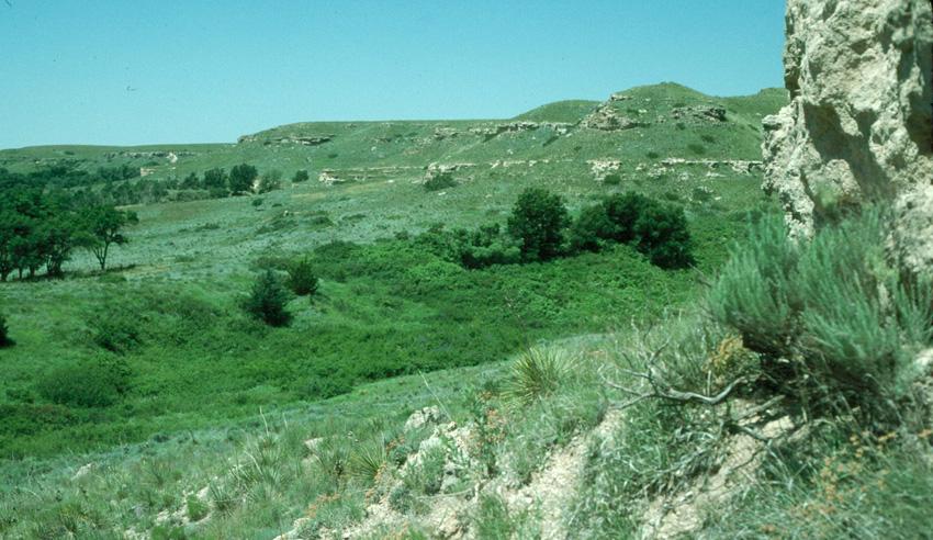 Outcrop view