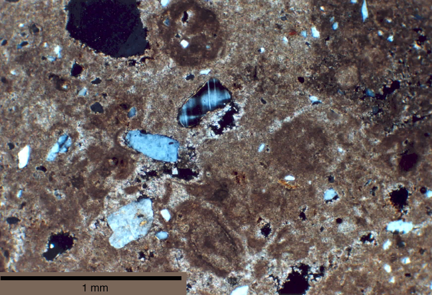 Thin-section image