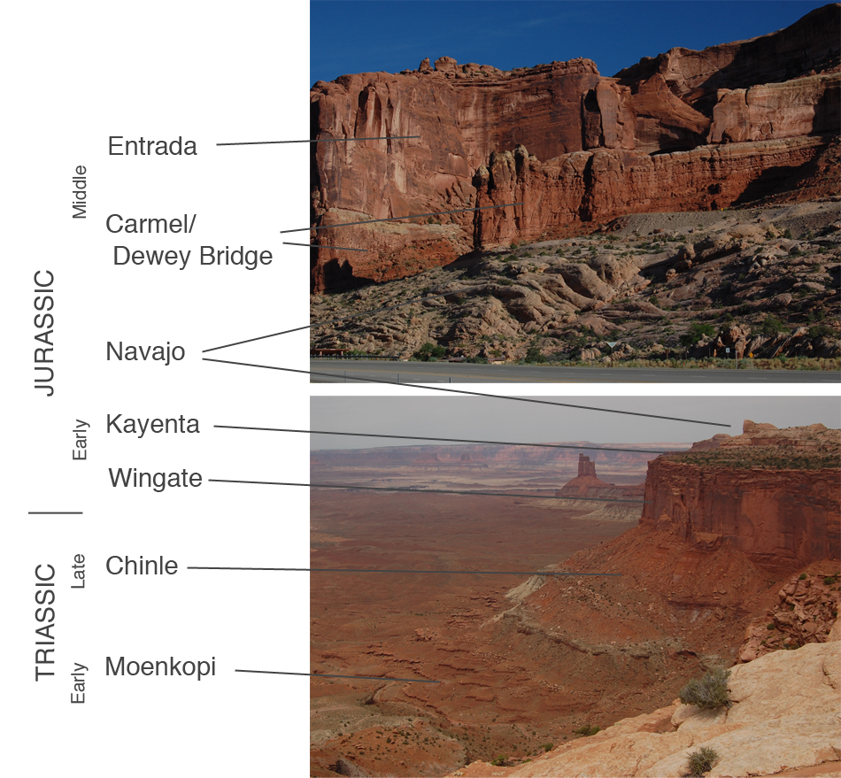 Local Stratigraphy