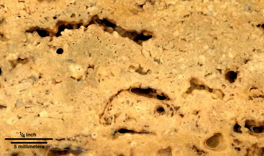 Detailed view of Piece of travertine